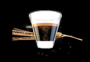 Caffé d'orzo